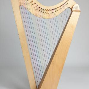 Rainbow Harp Hire Subscription